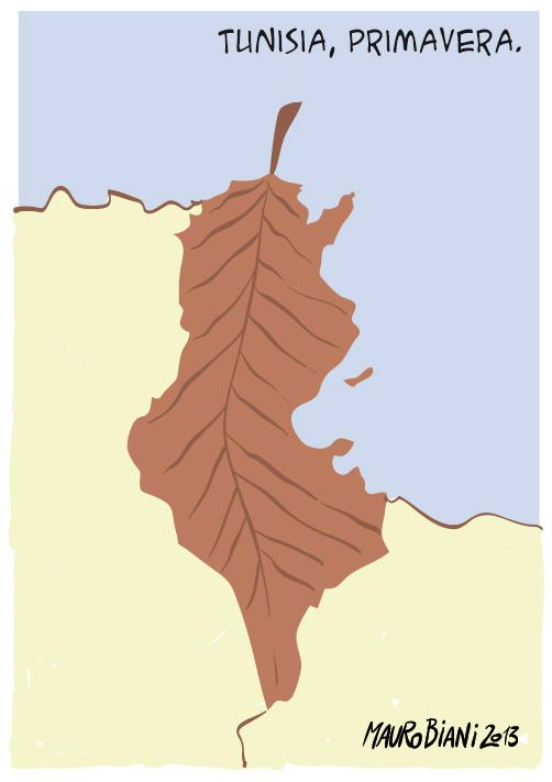 tunisia-primavera-araba