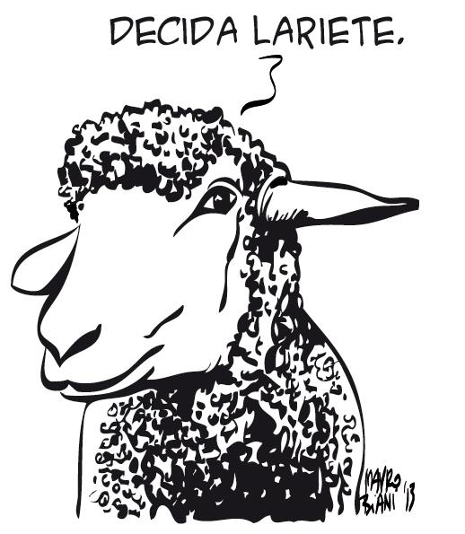 la-rete-decida-pecora
