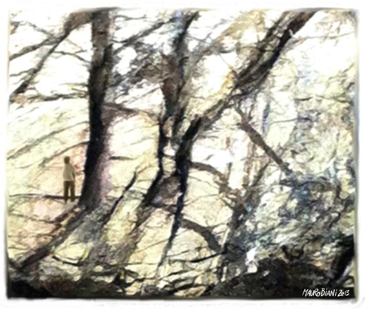 bosco-roccia-elba-ragazzo-Finale