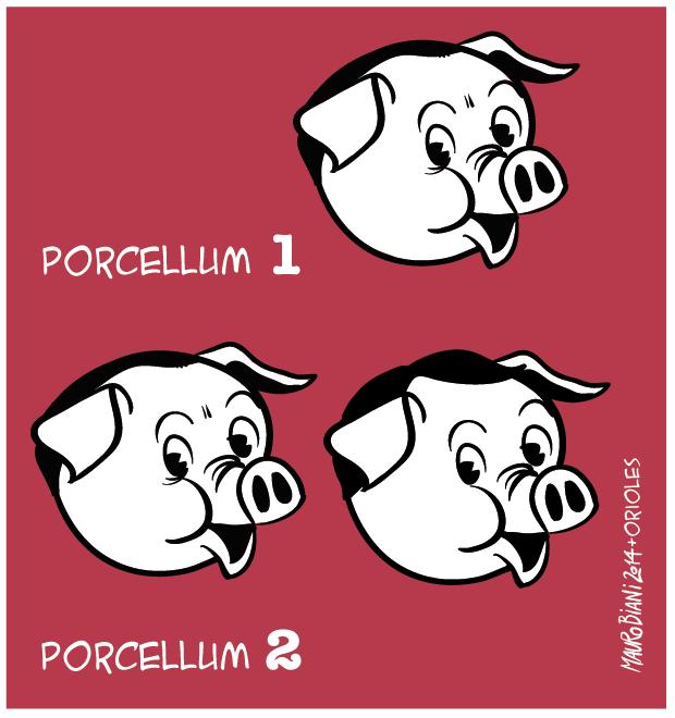 legge-elettorale-porcellum-1-e-2